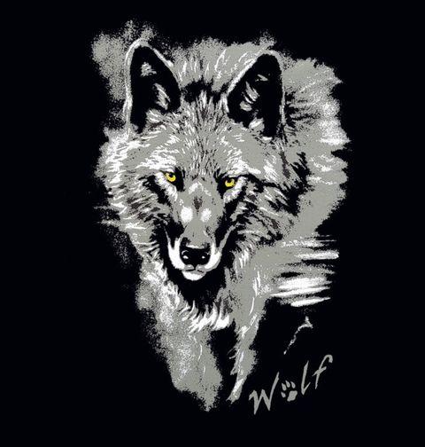 Obrázek produktu Pánské tričko Osamělý vlk