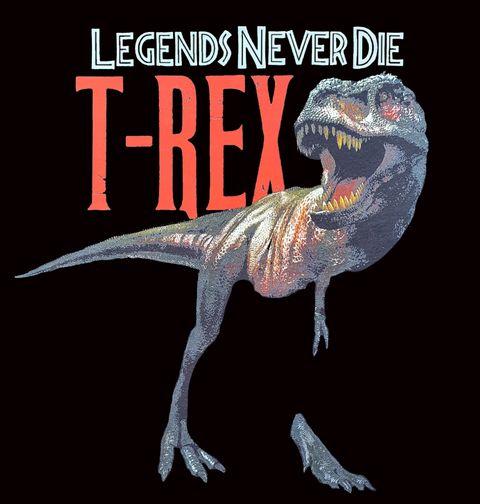 Obrázek produktu Pánské tričko T-Rex Legends Never Die