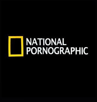 Obrázek 2 produktu Dámské tričko National Pornographic