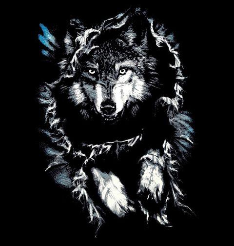 Obrázek produktu Pánské tričko Tajemný Vlk